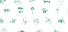 自然植物图片