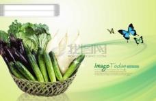 蔬果素材01