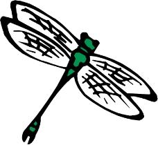 昆虫蝴蝶0840