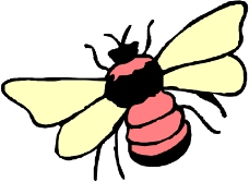 昆虫蝴蝶0452