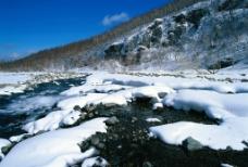 冬雪系列1图片