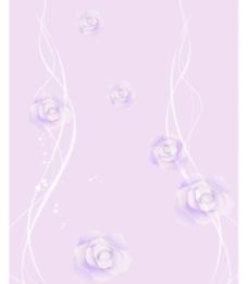 紫色的玫瑰图片