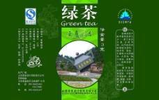 更香绿茶叶图片