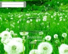 綠草地 花言巧語 蒲公英在微笑 PSD分層素材 婚紗攝影 源文件庫 300DPI PSD 攝影模板