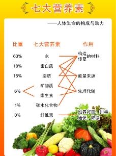 七大营养素图片
