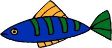 水中动物0911