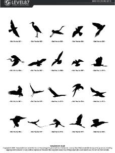 鸟类剪影图片