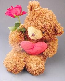 拿花的玩具熊图片