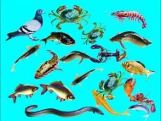 海鲜潮汕砂锅粥图片