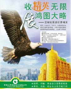 中國人壽招聘圖片