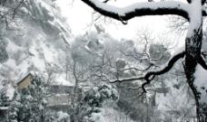 少室山三皇禅院图片
