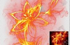高清透明分层火焰盛开的花儿图片