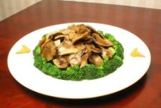 凉拌平菇图片