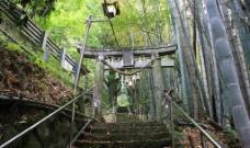 日本 福冈神社图片