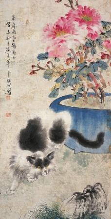 猫趣图图片