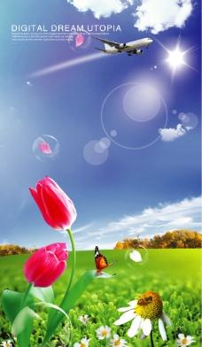 蓝天与花图片