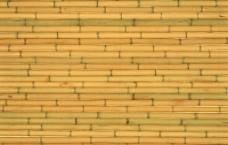 细竹子排列图片