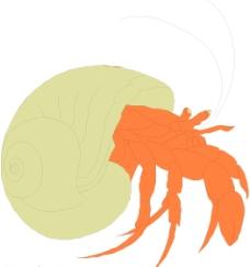 寄居蟹圖片
