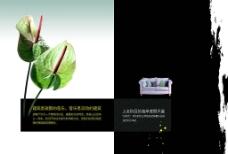 房地产宣传册封面图片