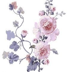 高清晰分层花纹图片