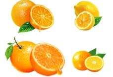 橙子柠檬图片