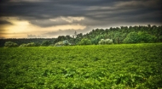 田园风光图片