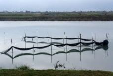 蘭陽溪河口圖片