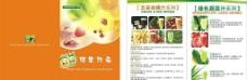 鲜水果样本封面图片