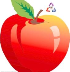 矢量苹果图片